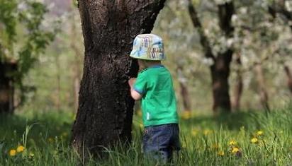 Alam mengajar secara lembut, tak membosankan. (Dok. Istimewa)