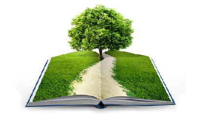 """Mengapa """"living books"""" penting bagi anak? (Dok. Istimewa)"""